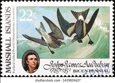 Milan, Italy - May 17, 2019: Marine birds painted by Audubon on postage stamp