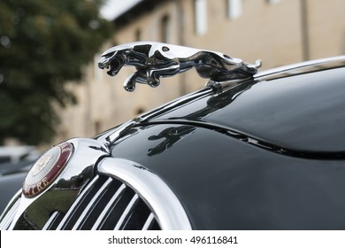 Milan, Italy - october 01, 2016: Hood ornament (Jaguar in the jump) on a vintage Jaguar car