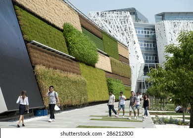 MILAN, ITALY-JUNE 05, 2015: vertical wall garden food plants of the Israel pavillion at EXPO 2015, in Milan.
