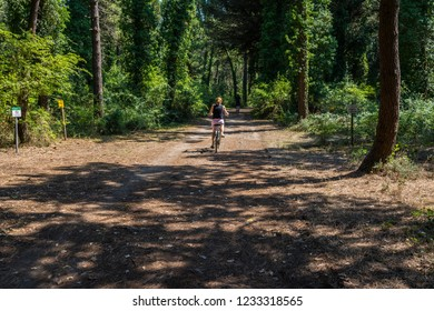 Milano Marittima, Italy - July 13, 2018: Young woman and boy cycling in the pine forest.
