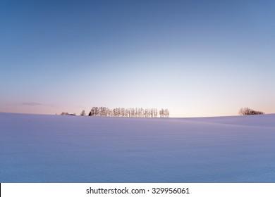 Mild seven hill in winter, Biei, Hokkaido, Japan