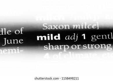 mild word in a dictionary. mild concept.