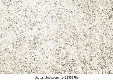 mildewed wall background, grunge texture of dirty cement wall