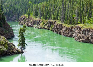 Miles Canyon Yukon River rock cliffs in dense boreal forest taiga just South of the city of Whitehorse, Yukon Territory, Canada