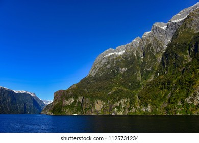 Milford Sound in Fiordland National Park, New Zealand
