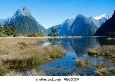 Milford Sound, Fiordland National Park, South Island, New Zealand