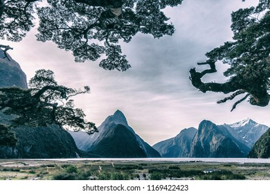 Milford sound, spectacular landscape in the Fjordland area of New Zeland, south island