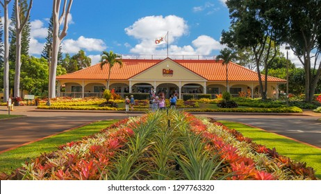 MILILANI, UNITED STATES OF AMERICA - JANUARY 12, 2015: a view of the dole pineapple plantation at mililani in hawaii