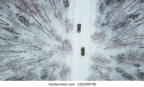 Military armored personnel carriers in the woods during military exercises. Clip. Top view of military armored personnel carriers in the forest in winter