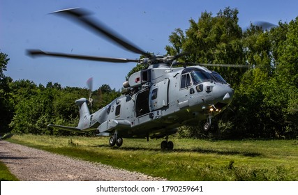 Military Helicopter Merlin EH101 landing in confined woodland area on a training mission.