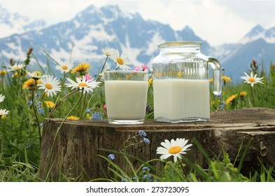 Milk glass and milk jug on the chamomile meadow pasture background in the Alps mountains, Switzerland