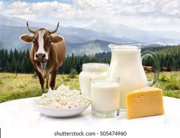 Milk, sour cream, cheese and cottage cheese on white table on background of meadows with cows in the mountains.