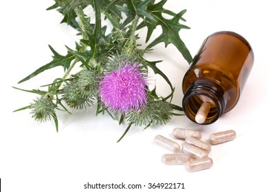 Milk thistle and capsules in brown medicine bottle on white background