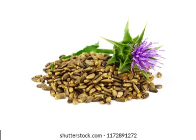 Milk Thistle Seeds Isolated on White Background.