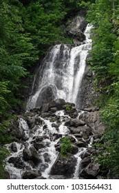 Milk waterfall in Georgia. Ritsa Relict National Park