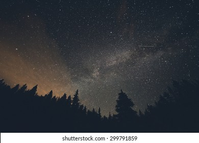 Milk Way night sky over pine trees at Breckenridge, Colorado