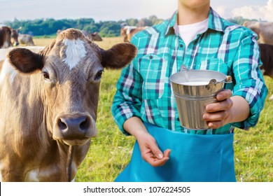Milkmaid with the milk bucket and cow on the background of the pasture.
