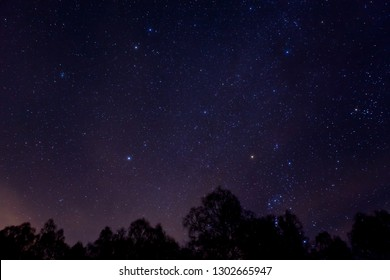Milky way above a tree horizon in Perthshire