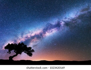 Milky Way with alone old crooked tree on the hill. Colorful night landscape with bright milky way, starry sky, tree, yellow light in summer. Space background. Galaxy. Beautiful universe. Travel