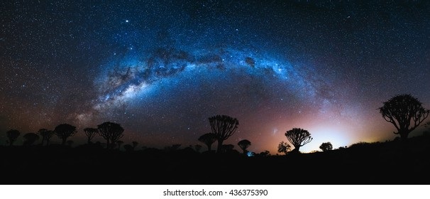 Milky Way arch and Magellanic Clouds over Quiver trees forest