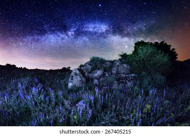 Milky Way. Beautiful summer night sky with stars, rocks and flowers in Ukraine