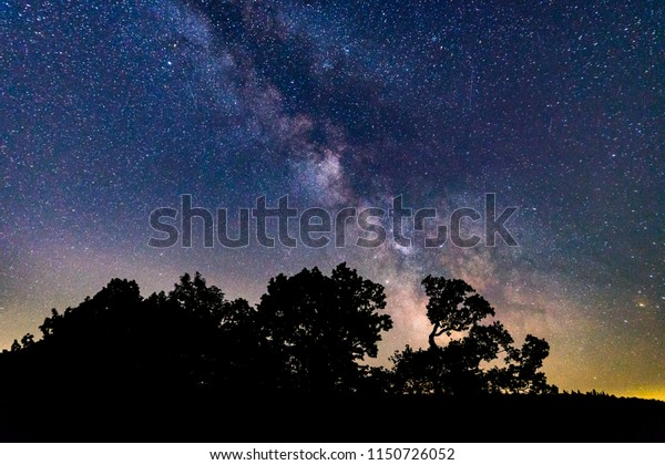Milky way behind some trees surrounded by a lot of stars. Shot taken in south Germany