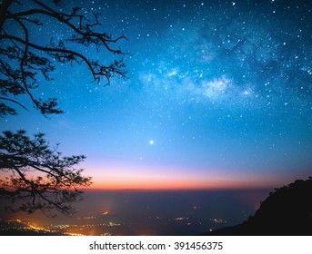 milky way with city lights and silhouette tree branches in morning dawn before sunrise