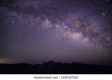 Milky way and forest