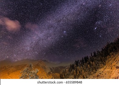 Milky way Galactic center as seen from village called Tosh, Himachal pradesh, India. beautiful and amazing night sky. Starry night background / wallpapaer. Yellow and purple colors. Trees and forest