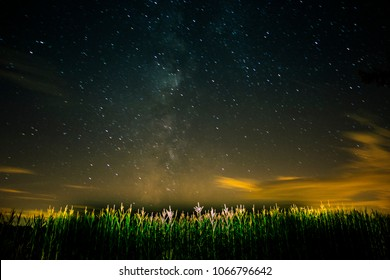 Milky way galaxy shining bright down the middle of a corn field in Pennsylvania.