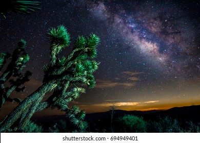 Milky Way with a Joshua Tree in the desert