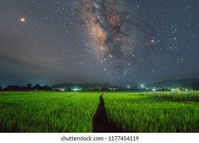 Milky way with mars in the dark night over the green rice fields and light from rural village.Rice paddy fields in the night with Milky way.