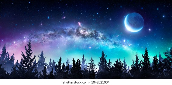 Milky Way And Moon In Night Forest - Contain illustration and elements of this image furnished by NASA