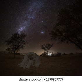 milky way in Namibian outback