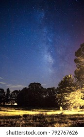 The milky way over a field in the country