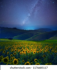 The milky way over landscape view with sunflower field at night as in beautiful landscape view background.