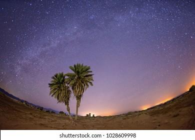 Milky Way over Nabq National Park. Sharm el Sheikh. Egypt