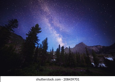The Milky Way and some trees. In the mountains of Sayan in Russia
