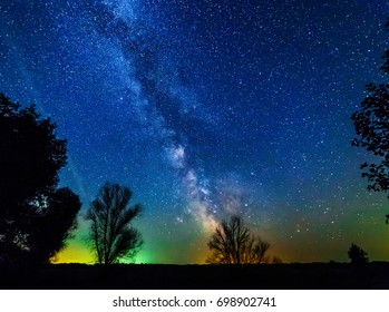 Milky way and stars above the trees.