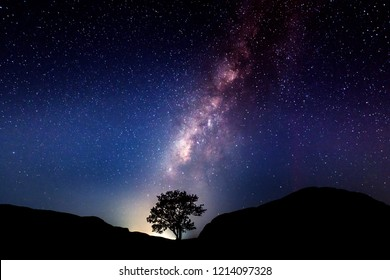 Milky Way and tree on the hill. Old tree growing out of the mountain against night starry sky with purple milky way. Night landscape. Space background with noise and grain.