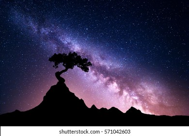 Milky Way and tree on the mountain. Old tree growing out of the rock against night starry sky with purple milky way. Night landscape. Space background. Galaxy. Mountain ridge. Wilderness, wild nature