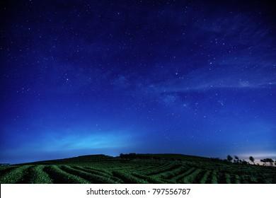 Milky way under the tea plantation