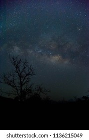 milkyway in dark night