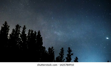 milkyway over some tree tops