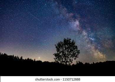 Milkyway with a lot of stars rising over a lonely tree, Germany