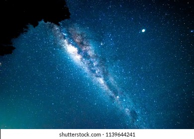 Milkyway with tree silhouette.