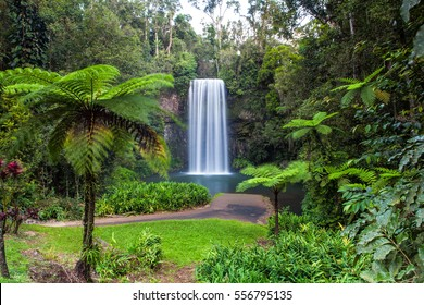 Millaa Millaa Falls in the Atherton Tablelands in North Queensland, Australia