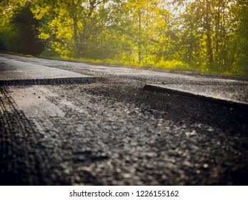 Milled roadway in the forest