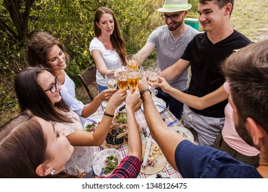 millennials toasting with wine while they have a picnic party outdoors in the garden. potluck gathering of diverse friends celebrating togetherness in countryside.