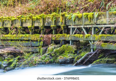millrace  in old grist mill,Washington,usa.